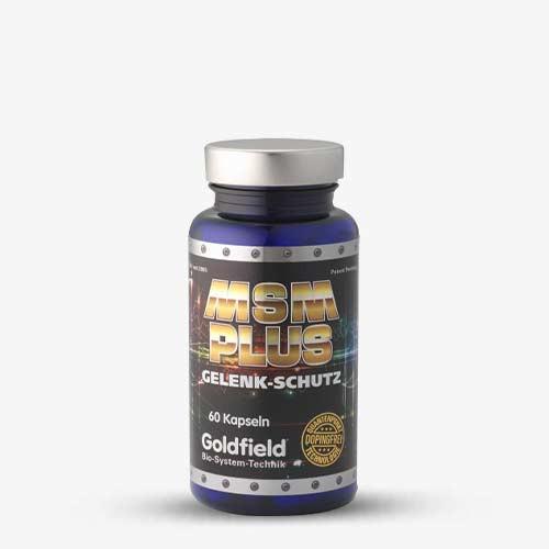 Goldfield MSM Plus 60 Kapseln