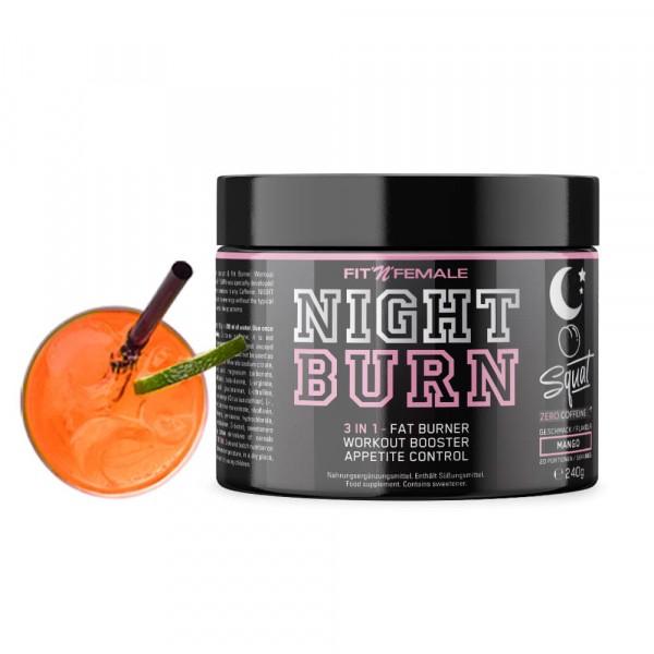 FITNFEMALE Night Burn 3 in 1 - Fatburner, Workout Booster & Appetite control 240g